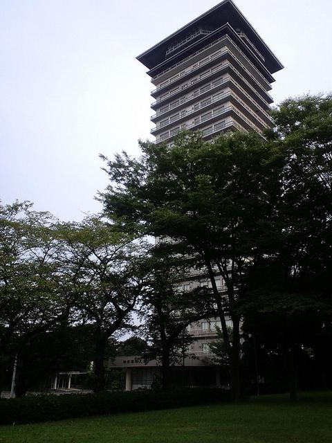 横浜薬化大学3