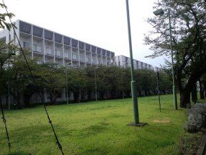 横浜薬化大学5