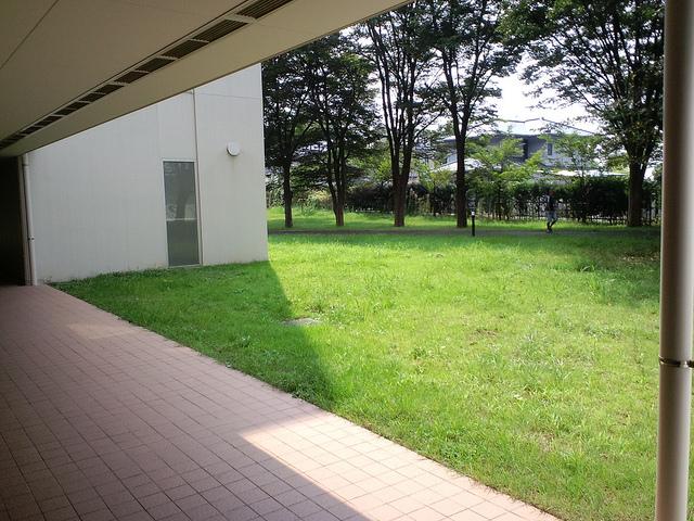 横浜薬化大学2