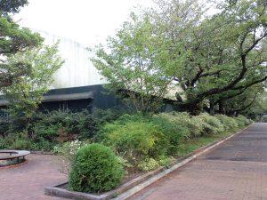 横浜薬化大学6