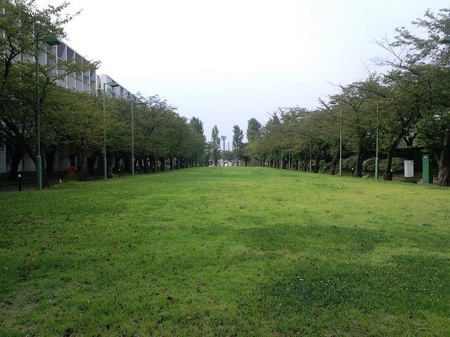横浜薬化大学4